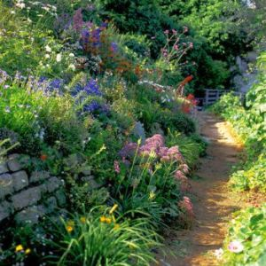 Garden pathway along sunny flower wall leading into the distance